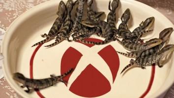 The Lizard Squad ahora vende sus servicios en la red-min
